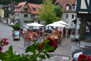 hotel-restaurant-zum-taunus-eppstein_ausblick_003